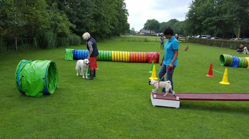 Hondenopvoedcentrum Eemland